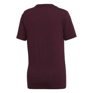 19deaf6fb koszulka adidas Trefoil Tee DH3174 koszulka adidas Trefoil Tee DH3174 · adidas  Originals