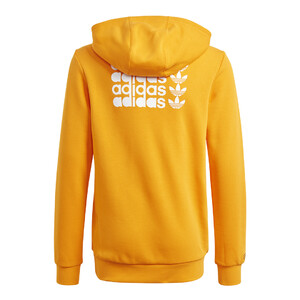 bluza adidas Graphic Hoody GN4256