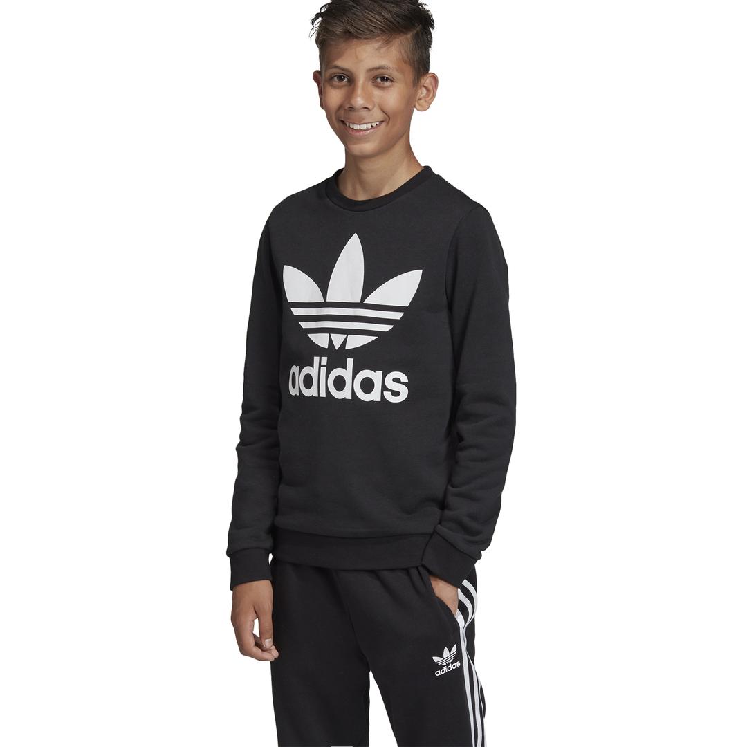 bluza adidas Trefoil Crew Sweatshirt ED7797